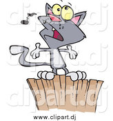Cartoon Vector Clipart of a Gray Cat Singing on a Fence by Toonaday